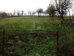 Pozemok Nitrianske Sučany na predaj, rozloha 1450 m2 - Stavebné, komerčné a iné pozemky - Nitrianske Sučany